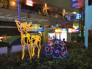 My favorite Christmas decoration ever - the clotheslined reindeer outside our neighborhood department store in Sasazuka.