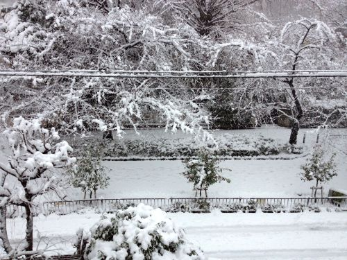 On Monday, Jan. 14, 2013, we got a shitload of snow here in Tokyo. This was the view from the third floor entryway.