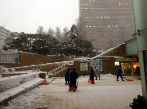 The only shovels I saw in Tokyo were outside the Sunshine City Mall. That's the definition of irony, right?