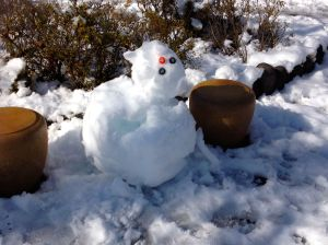 This is one of the two-balled snowmen the neighborhood children built in the park across the street. Unfortunately I took the picture the day after the blizzard so poor Frosty already started to melt.