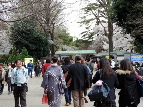 I went to Shinjuku Park on a Tuesday afternoon thinking it wouldn't be very crowded. I was wrong. This is the throng of people at the entrance to the park.
