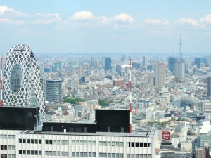 The view of downtown Tokyo from the 45th floor of the Tokyo Metropolitan Government Building. The Sky Tree can be seen in the back right.