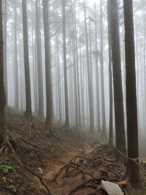 The mysterious Mount Buko.